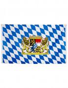 Vous aimerez aussi : Bannière drapeau Bavarois 90 x 150 cm