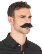 Vous aimerez aussi : Moustache adhésive noire adulte
