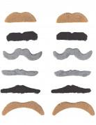 Vous aimerez aussi : Lot de 12 moustaches adulte