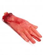 Vous aimerez aussi : Main coupée ensanglantée Halloween