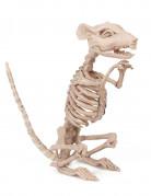Décoration rat squelette Halloween