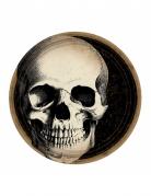 10 Assiettes en carton Crâne d'Halloween 23 cm