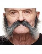 Moustache avec pattesgrisonnante homme
