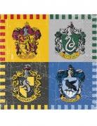 Vous aimerez aussi : 16 Petites serviettes en papier Harry Potter ™ 25 x 25 cm