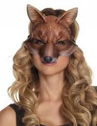 Loup renard adulte