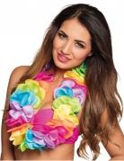 Vous aimerez aussi : Collier Hawaï multicolore pastels luxe satin