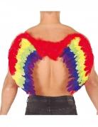 Ailes plumes phoenix multicolores 80 X 50 cm