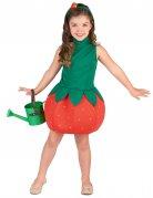 Vous aimerez aussi : Déguisement robe fraise fille
