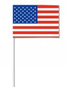 Vous aimerez aussi : Drapeau papier USA 14 x 21 cm