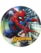 Vous aimerez aussi : 8 Assiettes en carton Spiderman™ 23 cm