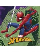 20 Serviettes en papier 33 x 33 cm Spiderman™