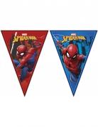 Guirlande fanions Spiderman™ 2,3 m x 25 cm