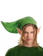 Kit Link Adulte - Legend of Zelda™