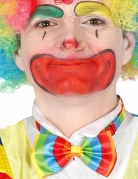 Noeud papillon clown multicolore adulte