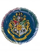 Ballon aluminium Harry Potter™ 45 cm