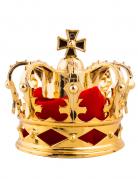 Vous aimerez aussi : Pince à cheveux mini couronne royale dorée