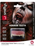 Dentier animal luxe adulte