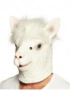 Masque intégral en latex lama blanc adulte