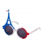 Vous aimerez aussi : Lunettes supporter tour eiffel France adulte