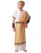 Déguisement romain or garçon