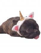 Déguisement licorne pour chien