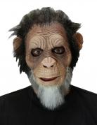 Vous aimerez aussi : Masque vieux singe adulte