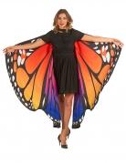 Ailes papillon multicolores adulte
