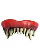 Dentier clown de l'horreur adulte